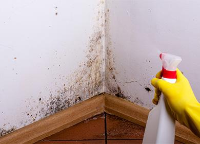 Как избавиться от плесени на стене в домашних условиях: чем обработать окна, потолки и обои