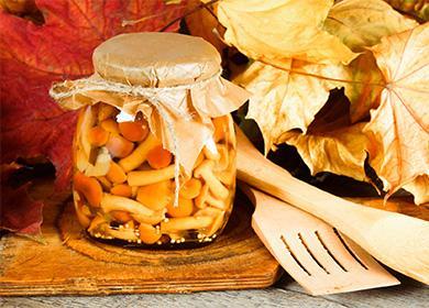 Рецепты приготовления соленых опят назиму: как распознать «диверсанта» вкорзине, испособ избавиться отлишней соли