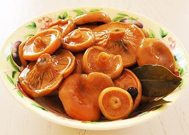 Соленые рыжики в тарелке