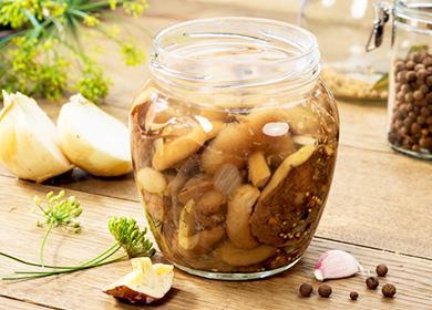 Как мариновать маслята назиму: подготовка сырья ибазовые рецепты