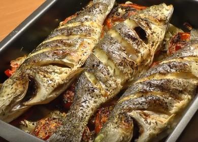 Как научиться готовить вкусного сибаса в духовке по пошаговому рецепту