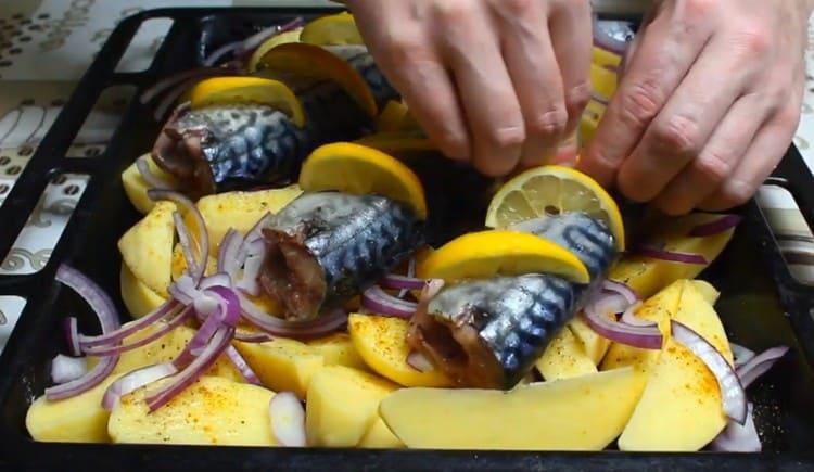 В надрезы на тушках вставляем кусочки лимона.