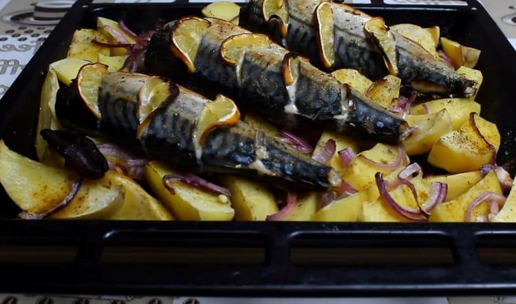 Скумбрия в духовке с картошкой, приготовленная по такому рецепту, это чудное полноценное блюдо.