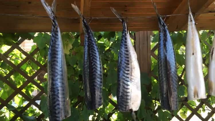 Для приготовления рыбы холодного копчения высушите рыбу