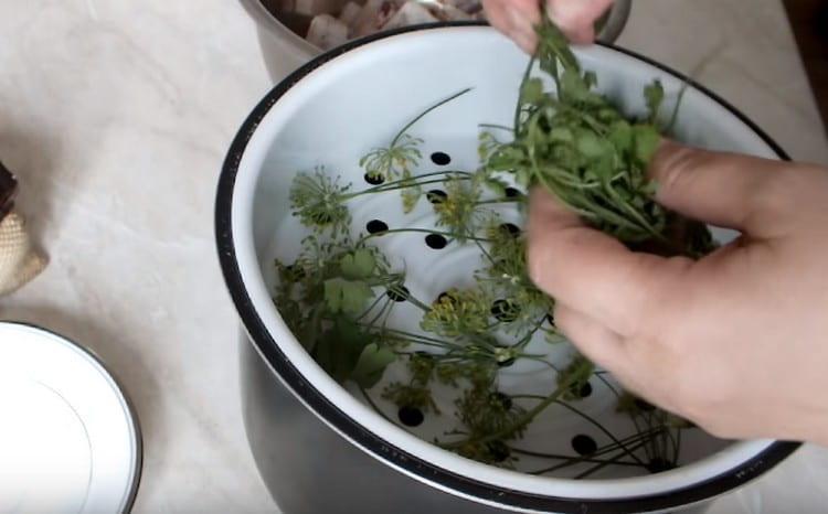 Добавляем также немного петрушки для аромата.