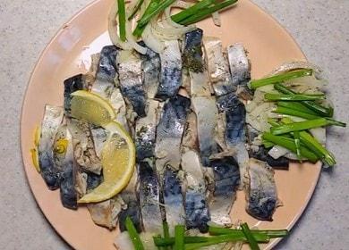 Сагудай из скумбрии — питательное, вкусное и полезное блюдо