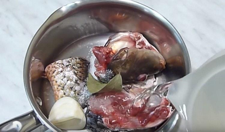 В кастрюлю выкладываем голову и хвост сазана, добавляем луковицу, лавровый лист и заливаем это водой.