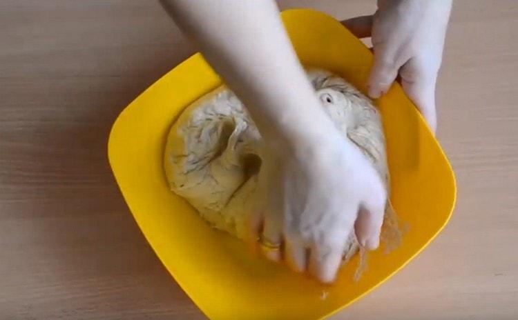 Когда тесто поднимется, нужно его обмять.