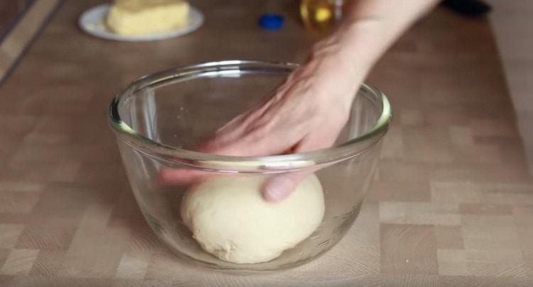 Готовое тесто выкладываем в смазанную растительным маслом миску.