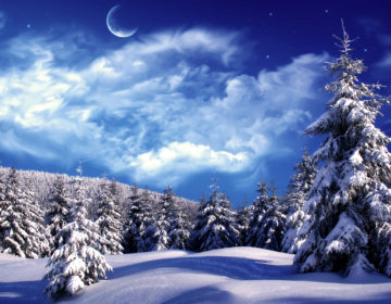 Пословицы про зиму: 50 поговорок со смыслом ✍