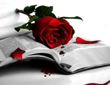Душевные стихи до слез: 50 красивых стихотворений со смыслом ✍