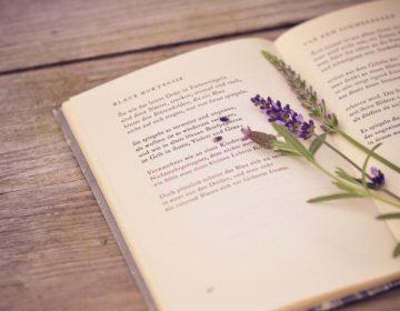 Стихи о любви от признанных классиков: 50 красивых стихотворений со смыслом ✍