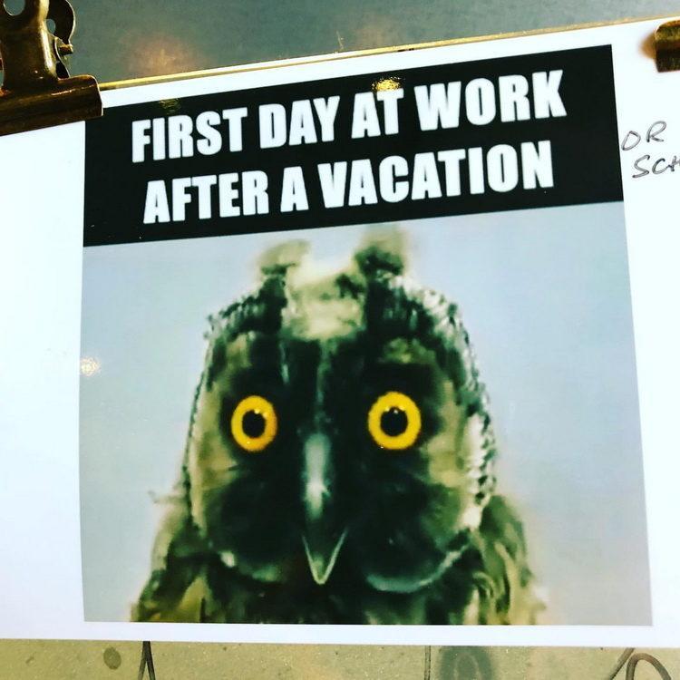 Самые прикольные статусы про отпуск