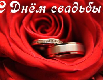 Поздравления на свадьбу 🥝 от мамы невесты своими словами: 50 пожеланий молодоженам со смыслом