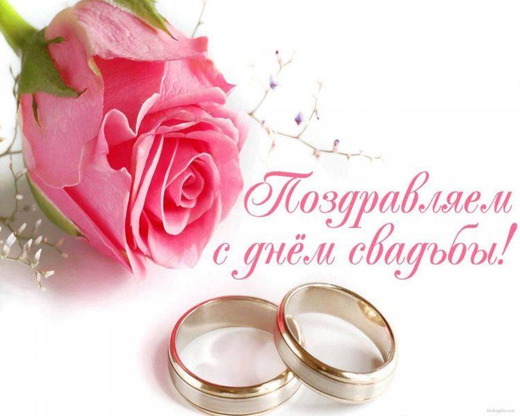 Поздравления на свадьбу подруге 🥝 50 красивых пожеланий лучшей подружке, невесте, трогательные, от друзей