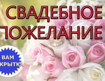 Пожелания на свадьбу 🥝 50 поздравлений молодоженам со смыслом
