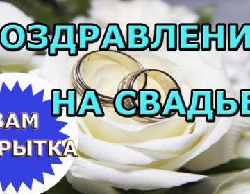 Шуточные поздравления на свадьбу 🥝 с подарками: 50 пожеланий молодоженам со смыслом