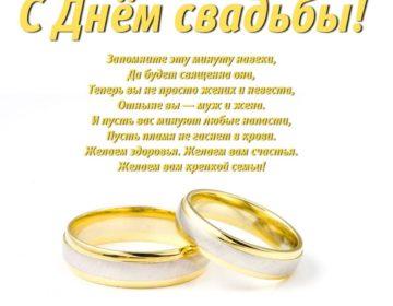 Тосты на свадьбу своими словами 🥝 50 пожеланий молодоженам со смыслом