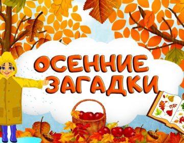Загадки про осень 🥝 40 самых лучших головоломок на русском