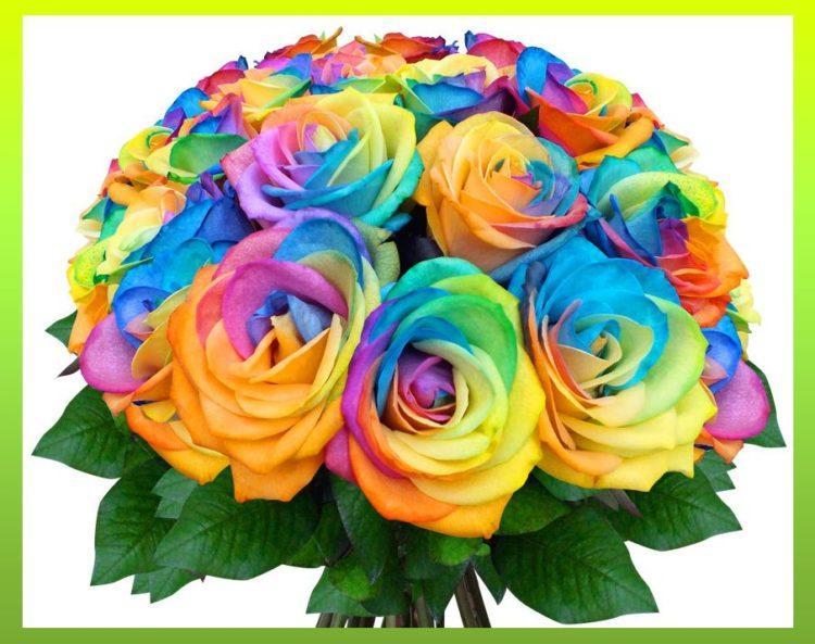 знают картинки с необычными цветами с днем рождения поздравления