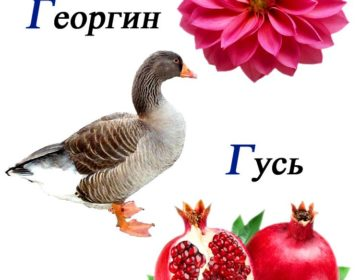 Скороговорки на букву г 🥝 50 самых лучших скороговорок на русском