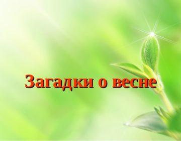 Загадки про весну 🥝 40 самых лучших головоломок на русском