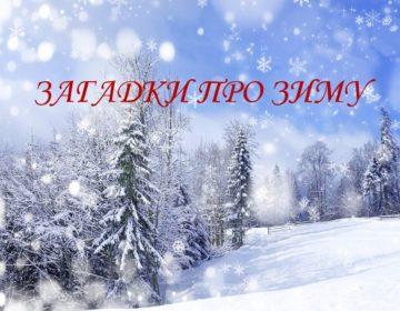 Загадки про зиму 🥝 40 самых лучших головоломок на русском