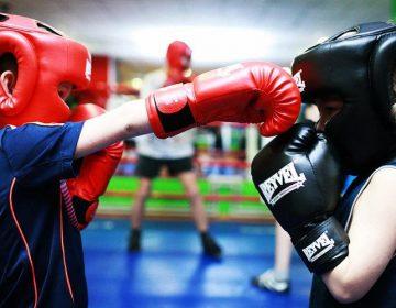 Борьба или бокс? В какую секцию стоит отдать сына