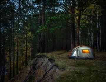 Лесной поход: правила получения удовольствия